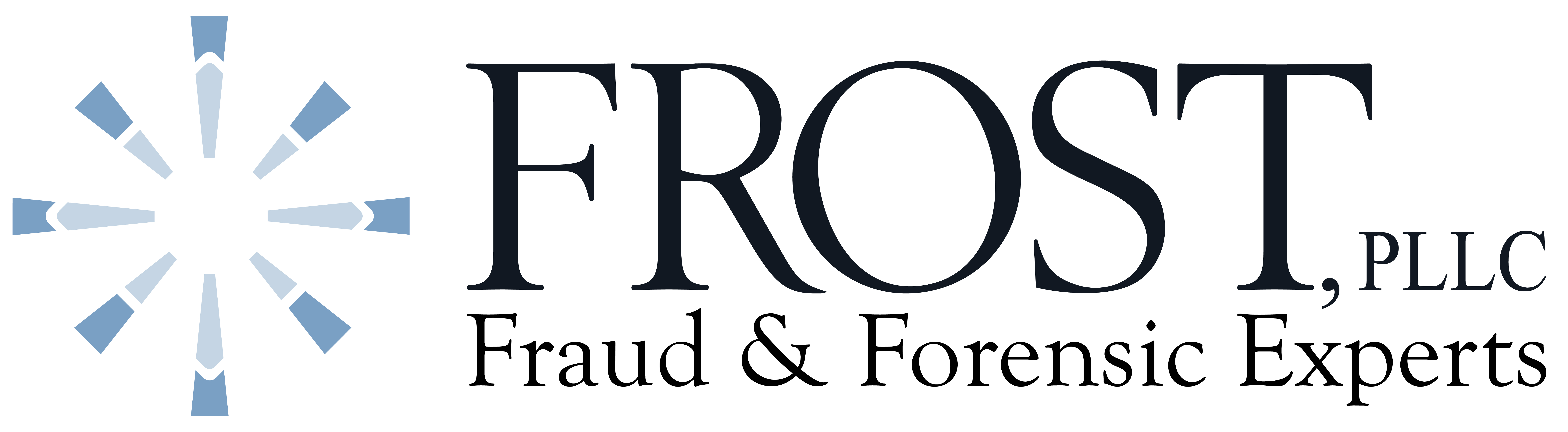 Frost Pllc Fraud Forensic Experts